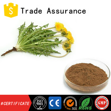 China supply organic dandelion p.e./natural dandelion extract with free sample available