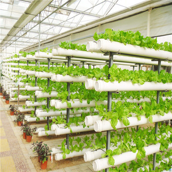 Durable plastic vegetable greenhouse hydroponics systems