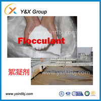 best price bulk polymer coagulant polyacrylamide high impact polymer