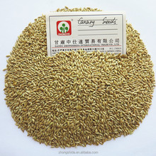 Bulk suppliers wholesale pet food canary bird seed