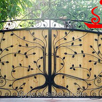 Nice Style Ornamental Wrought Iron Sliding