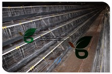 automatic chicken layer cage/Poultry Farm House/quail cage