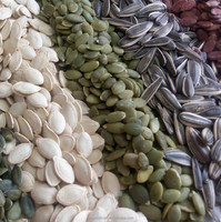 Shine skin pumpkin seeds kernel sale from factory directly