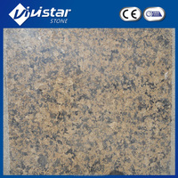 Competitive Price for Desert Gold Granite