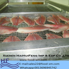 China CO treated ivp frozen tilapia fillet