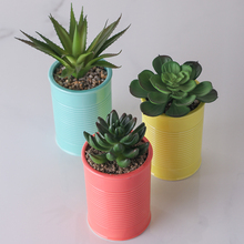 Mini Plastic Artificial Plants in Pot for Home Decor