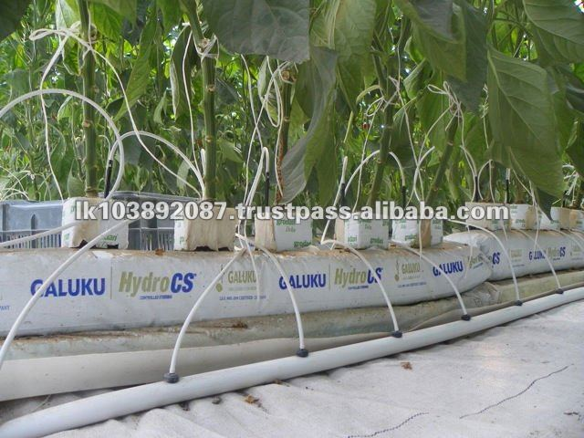 Coco Peat Greenhouse Grow Bag Based on Crops as Vegetable and Flowers