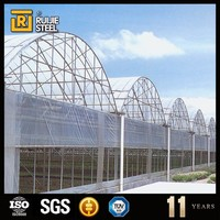 cheap tunnel greenhouse for agriculture , hydroponics plastic film greenhouse , poly tunnel