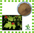 high quality Hawthorn Leaf Extract Powder