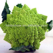High Quality Broccoli Seeds for Planting