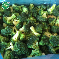 broccoli and iqf broccoli frozen vegetables