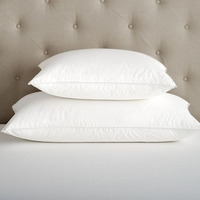 Plain Cotton Famous Brand Pillow