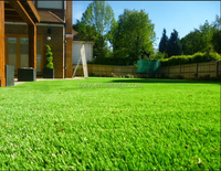 Natural Looking Beautiful Fake Artificial Grass Lawn