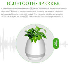 Beautiful Eggshell Music Flowerpot relieve mood and add some interest to life with leisure