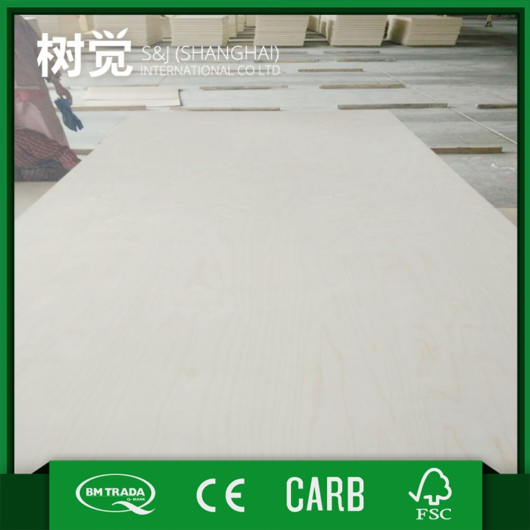 China supplier manufacture Trade Assurance white birch plywood wood