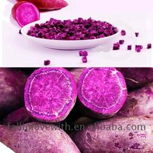 Food Grade Custom Doypack purple potatoes mashed in low price