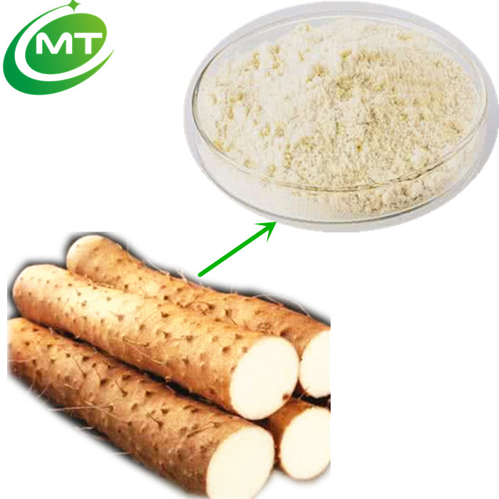 100% pure natural high quality GMP manufacture Wild Yam Extract