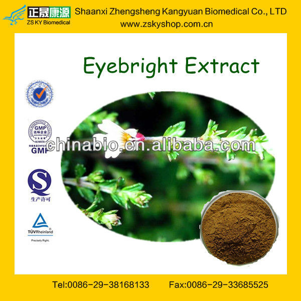 GMP Certified Manufacturer Supply Eyebright Extract Powder