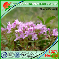Chinese herbal medicine Thyme Extract / Thymus Vulgaris Extract