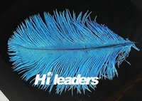 Natural Dyed Ostrich Feather Pick