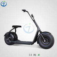 Big moter 2016 hot selling with LCD display long range 70km 36v 250w electric dirt bike.html