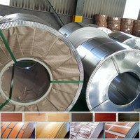 hot sale PPGI/GI steel coil steel strips from china
