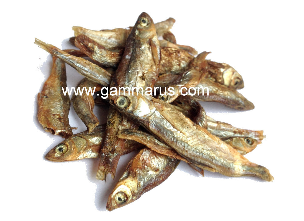 dried fishes