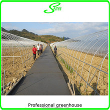 Polytunnel steel structure used greenhouse
