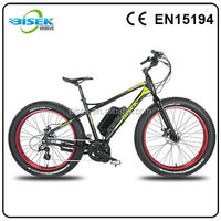fat tire bike with bafang 8fun 48V 750W mid drive motor