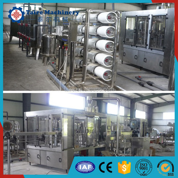 2017 Factory price hot sales Beverage filling line with certificate