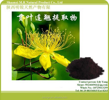 100% Natural Anti Depression St John's Wort Extract for 0.3% Hypercins