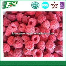 Best price iqf/frozen raspberries golden supplier