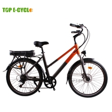 Made in China rear pack battery electric bike bicycle OEM service