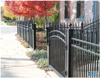 Competitive price swing gate metal gate/ Aluminum metal steel frame fence gates main gate and fence wall design