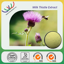 HACCP GMP Factory making hepatoprotective raw material 80% silymarin powder,high quality milk thistle extract