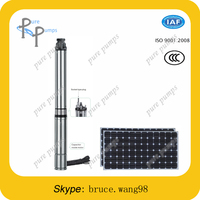 12V 3phase DC brushless motor solar deep well submersible water pump