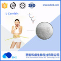 ISO Factory Supply Bulk 99% L carnitine