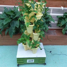 Small Home Complete Vertical Indoor Hydroponic Lighting Growing Systems