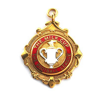 liverpool fc for medal