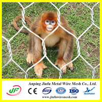 Anping hot dipped galvanized hexagonal wire poultry netting for chicken