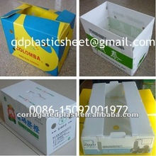 Recyclable Corrugated Plastic Fruit Box