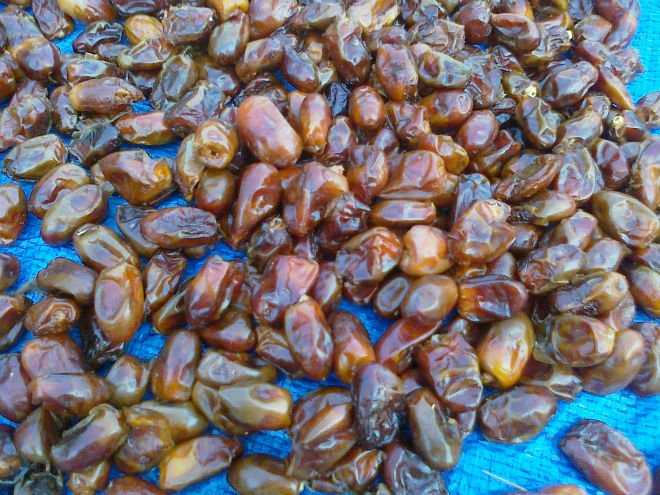 Fresh Omani Dates for sell