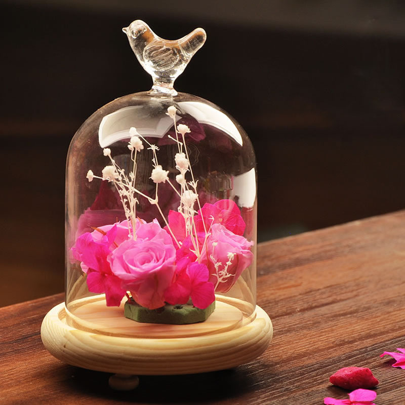 Bird shape rose glass dome terrarium wholesale glass bell dome