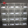 High Quality Pigeon Cages With Nests