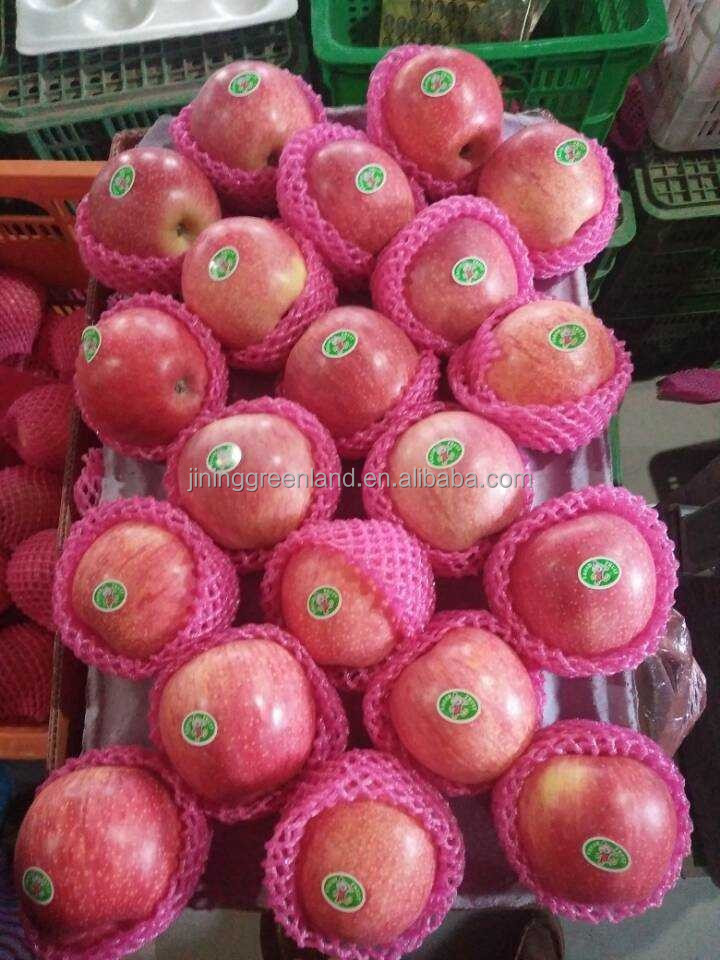 Fresh papper bagged qinguan apple/fresh fruit
