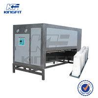 Directly Cooling Ice Block Machine Maker