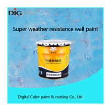 Digital Color high performance of weathering anti dust protective coating