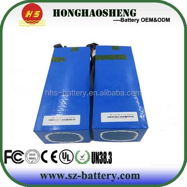 Rechargeable 48v 1000w 30ah lithium ion cell lifepo4 ebike battery pack