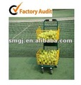 Portable Tennis Ball Transport Cart