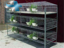 Foldable metal rabbit cage/rabbit breeding cages